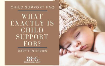 What Exactly Is Child Support For? Part-1 In Series