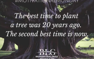 Motivational Monday – Best Time To Plant a Tree
